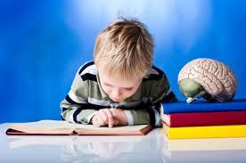 دانلود یادگیری مبتنی بر مغز